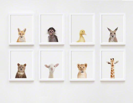 Baby Giraffe Little Darling Print - Project Nursery
