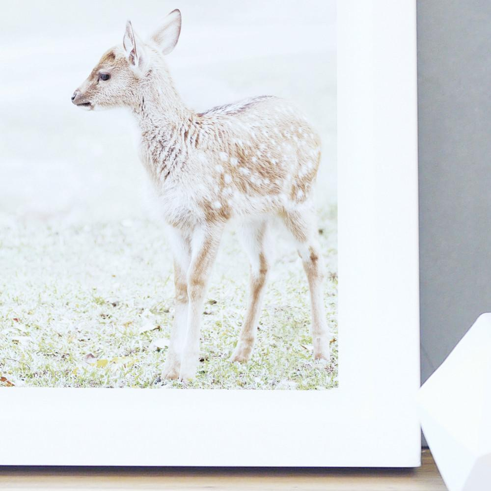Baby Deer Print  - The Project Nursery Shop - 2
