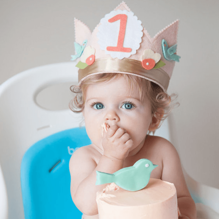 Shabby Chic Bird 1st Birthday Crown - Project Nursery