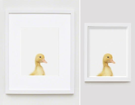 Duckling Little Darling Print - Project Nursery