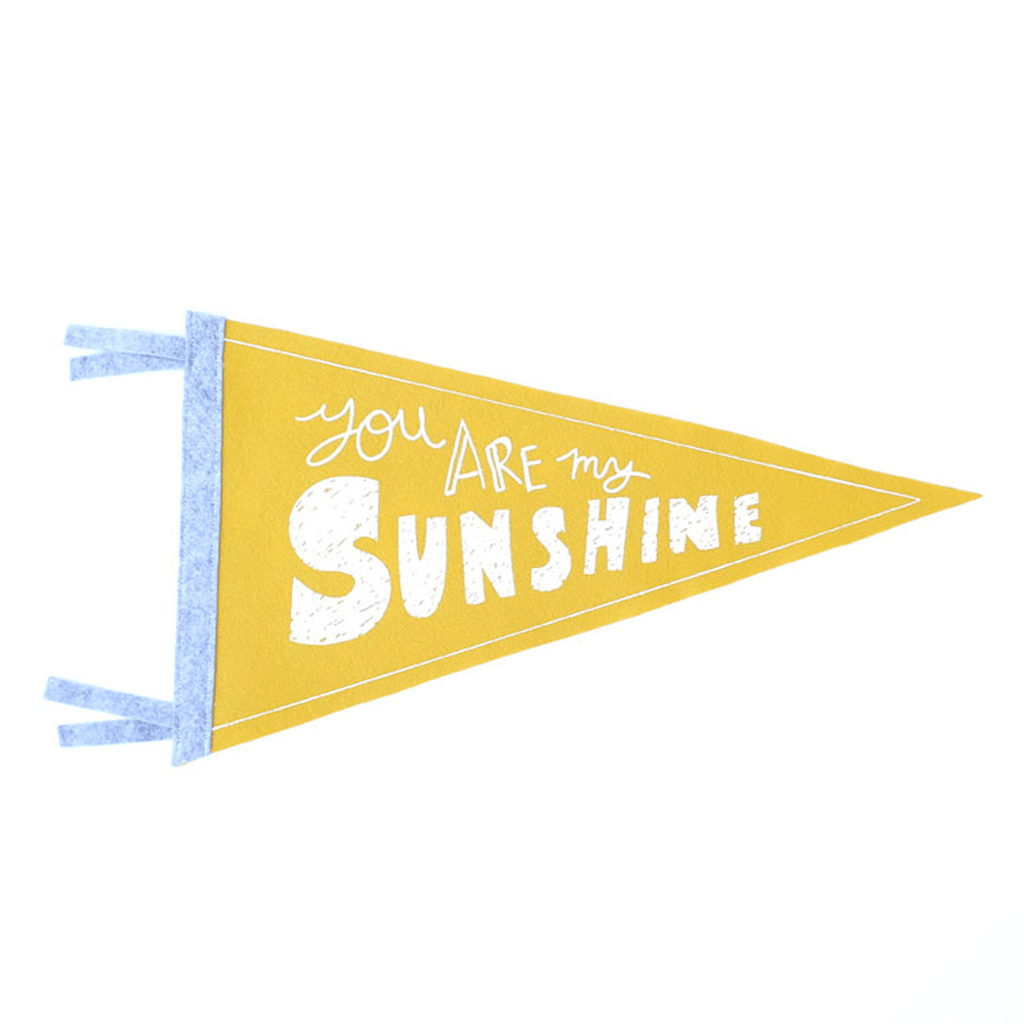 You Are My Sunshine Pennant  - The Project Nursery Shop