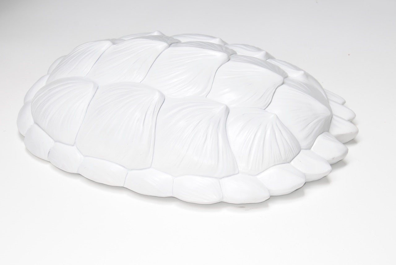 Tortoise Wall Sculpture in White - Project Nursery