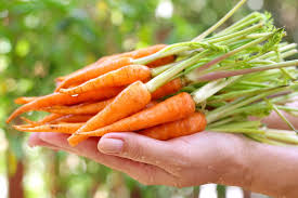 baby carrots 250gm