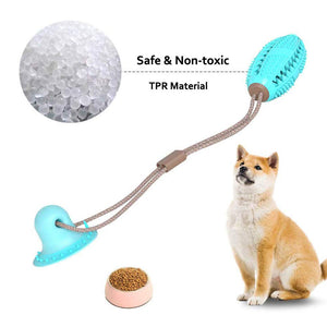 SUCTION CUP PET TOY [ FREE SHIPPING ]