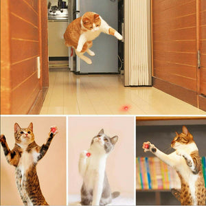 7 in 1 Function Pet Chaser Toys  [ FREE SHIPPING ]