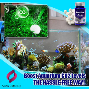AquaSafe CO2 Booster Tabs