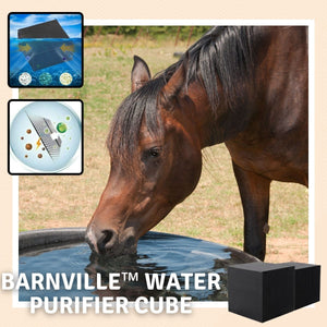 [PROMO 30% OFF] BarnVille™ Water Purifier Cube