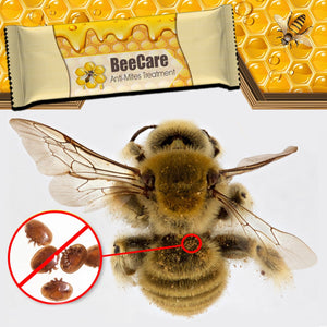 [PROMO 30% OFF] BeeCare Anti-Mites Treatment (20 Strips)