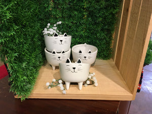 SMALL KITTY PLANTER