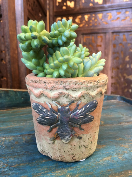 BUMBLE TERRACOTTA PLANTER - SMALL