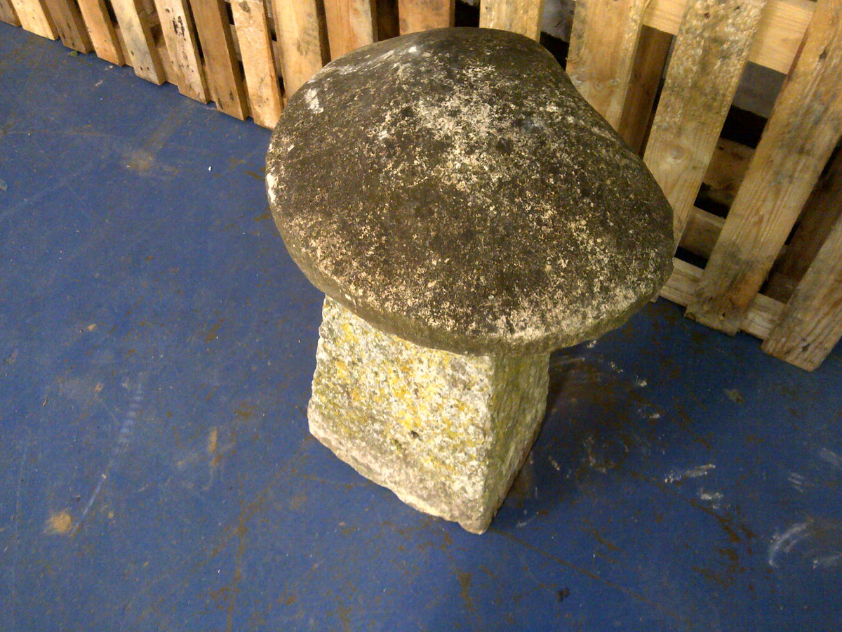 Staddle Stone #1