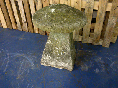 Staddle Stone #5