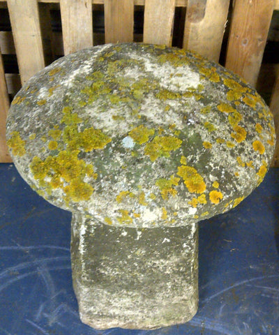 Staddle Stone #3