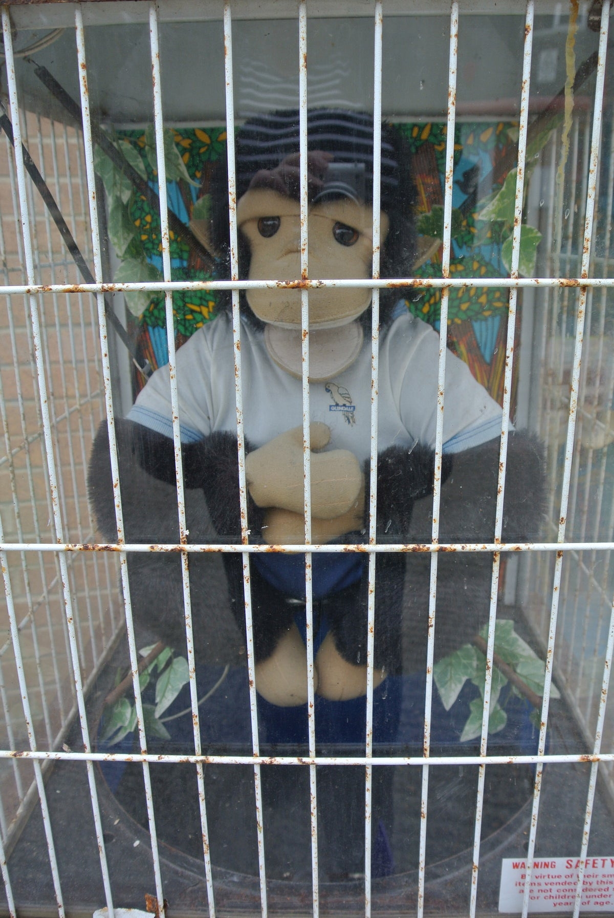 Glendale Talking Monkey Vending Machine