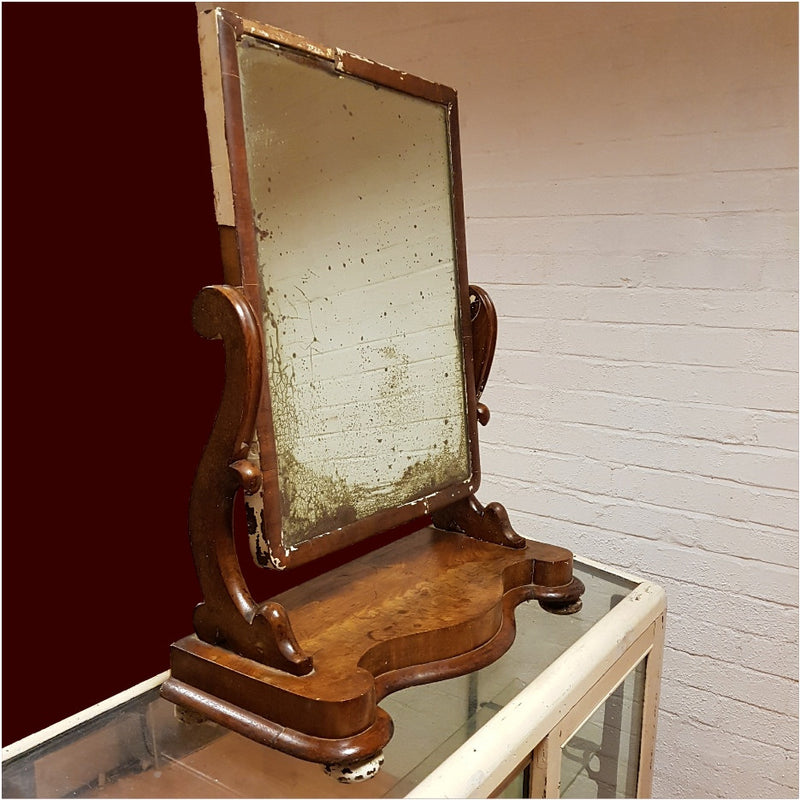 Antique Toilet Mirror