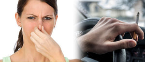 How to Get Rid of Common Car Odors