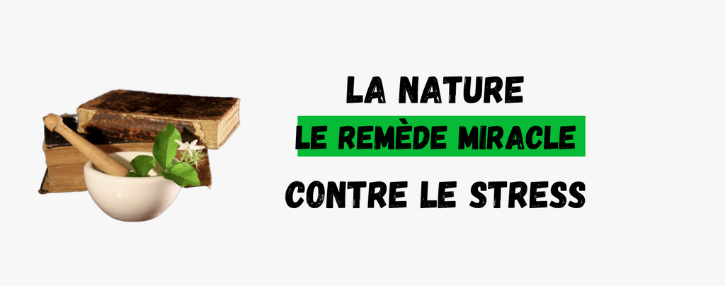 La nature, le remède miracle contre le stress ?