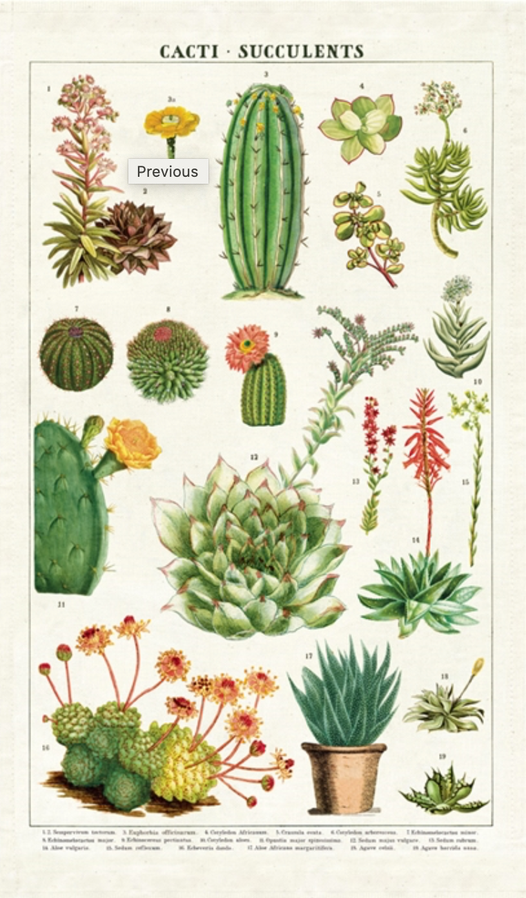 Cacti & Succulent Tea Towel