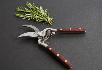 Kitchen & Garden Shears