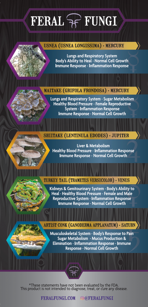 Quick Reference Guide - FeralFungi