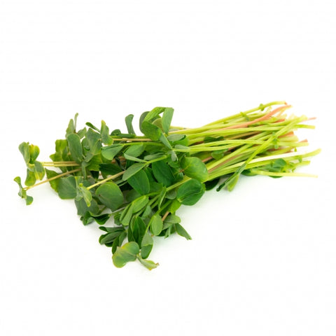 Sprouting Seeds - Microgreen Salad Mix - 100g