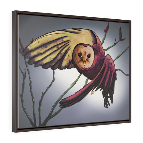 Barn Owl Framed Premium Gallery Wrap Canvas