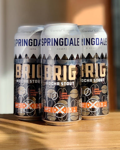 Springdale Brigadeiro Mocha Stout - 4 Pack, 16oz Cans - #neighbors_wine_shop#