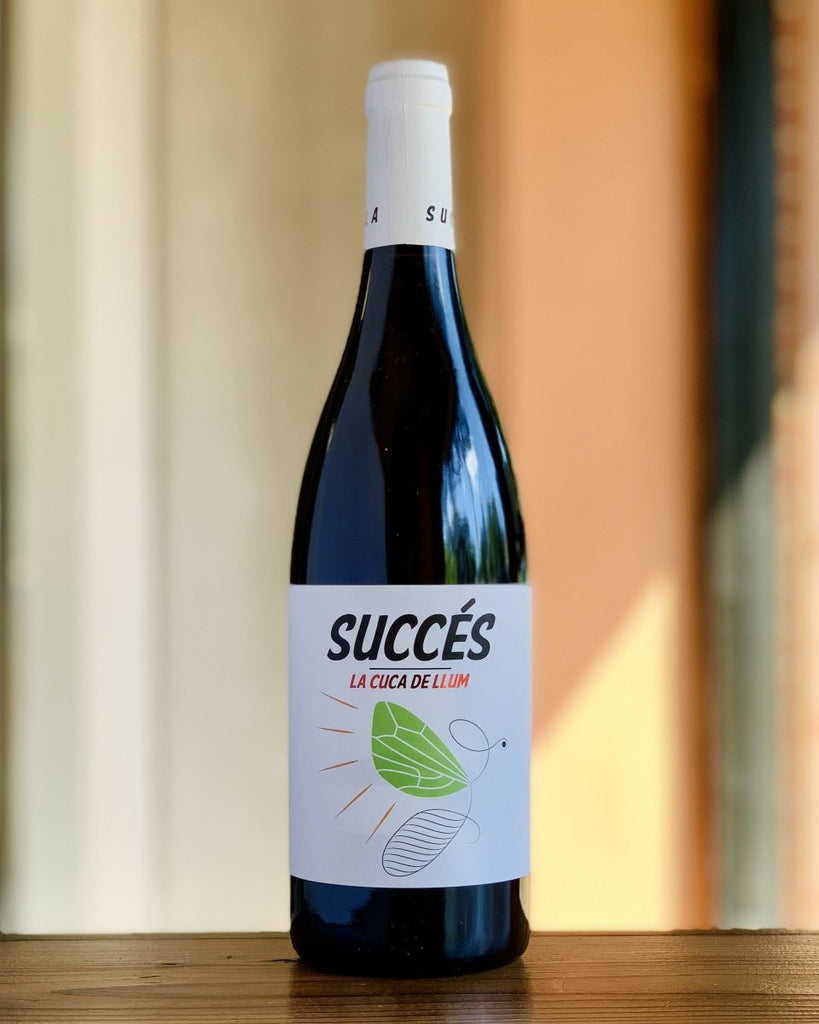 Succes Vinicola - Conca de Barberà Trepat 2019 - #neighbors_wine_shop#