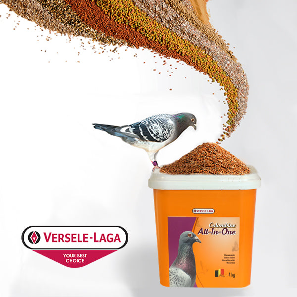 Versele-Laga All In One Mineral Grit 10kg