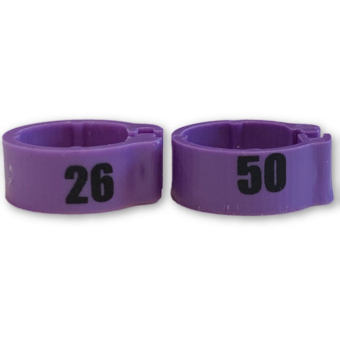Numbered Bands Purple