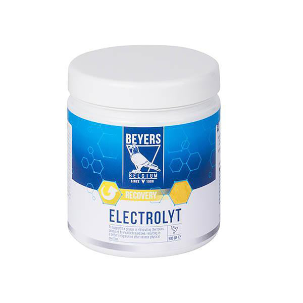 Beyers Electrolyt Plus 500g