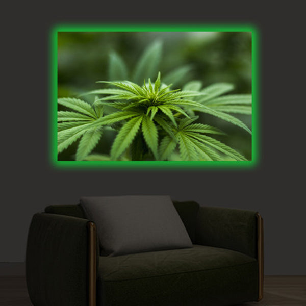 SMRT Home<BR/>LED 掛畫 - Cannabis