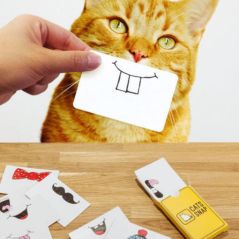 SUCK UK Cats Snap photo cards<br/>貓咪快拍卡