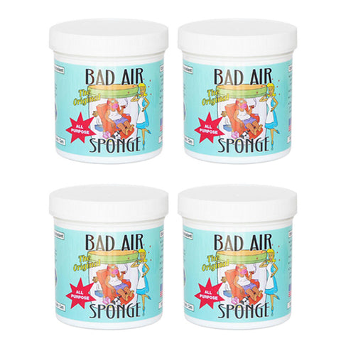 BAD AIR SPONGE Air Odor Absorbent<br/>空氣清凈劑組 (4入/組)
