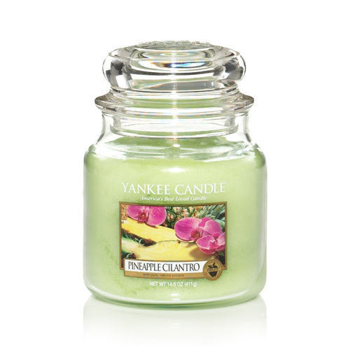 Medium 14.5 oz. Classic Jar - Pineapple Cilantro - Shark Tank Taiwan