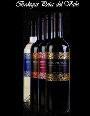 Bodegas Peña Del Valle </br> TEMPRANILLO  2013 Pack of Six (6瓶裝) - Shark Tank Taiwan