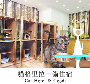 https://www.sharktank.com.tw/pages/cat-hotel-goods
