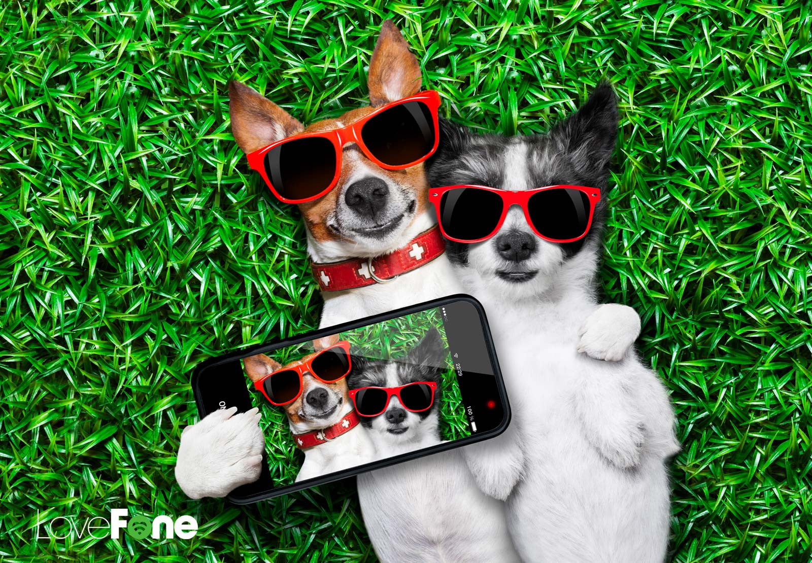 Finding love with your phone this Valentine's Day - Lovefone, London