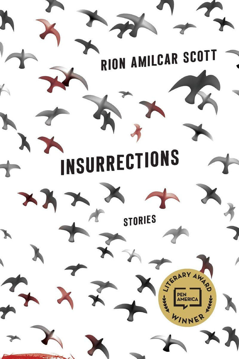 Insurrections: Stories (Contemporary Poetry And Prose)