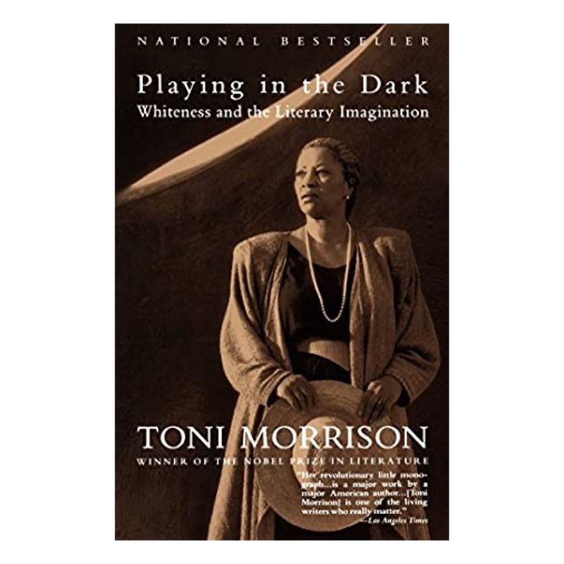 Playing in the Dark (Paperback)