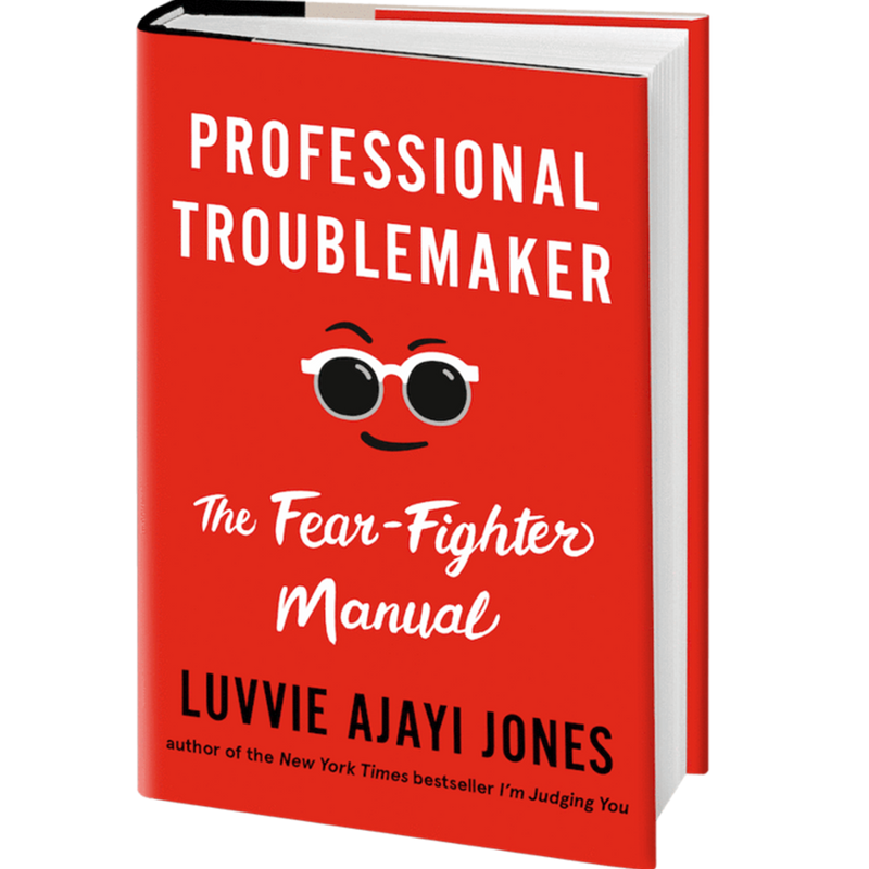 Professional Troublemaker: The Fear-Fighter Manual (Hardcover)
