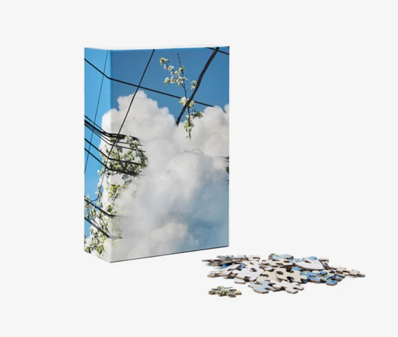 Copy of Puzzle in a Puzzle - Spring Cloud