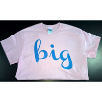 Big/Lil/Family Colored T-shirts