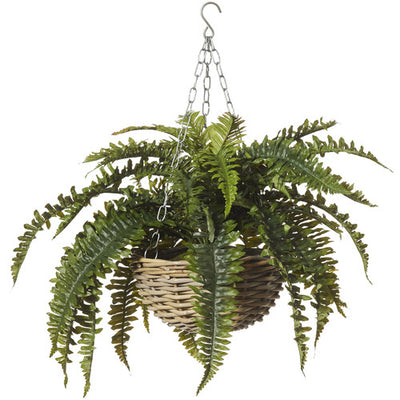 Boston Fern Hanging Rattan Bowl