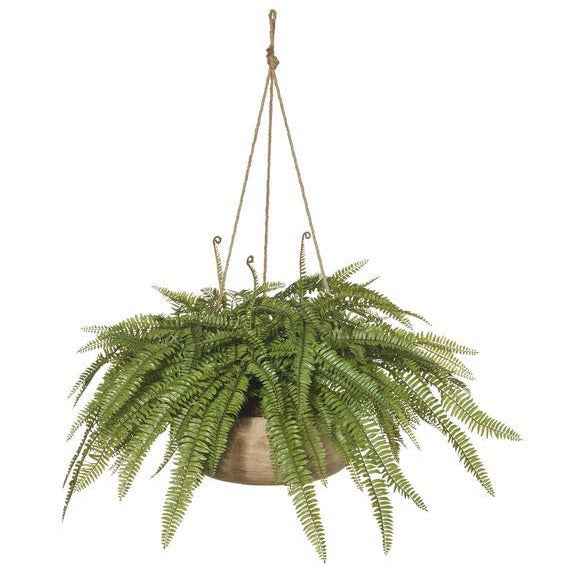 Boston Fern Hanging Dansk Bowl