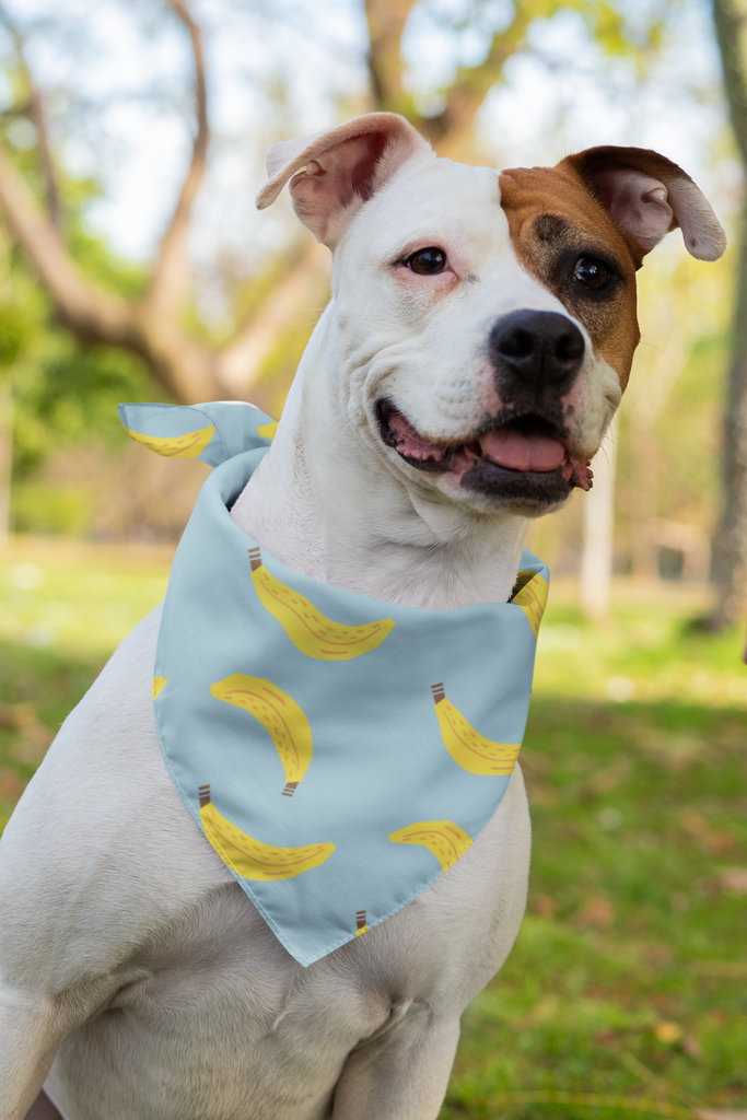 Banana Pet Bandana