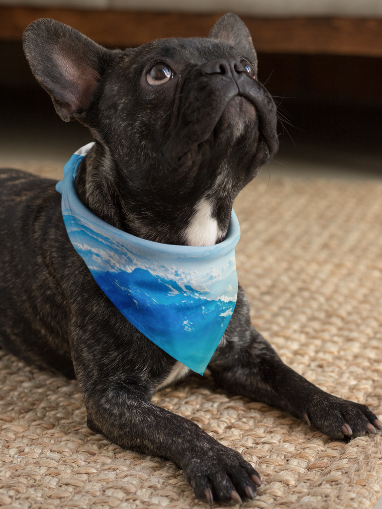 Blue Mountain Pet Bandana