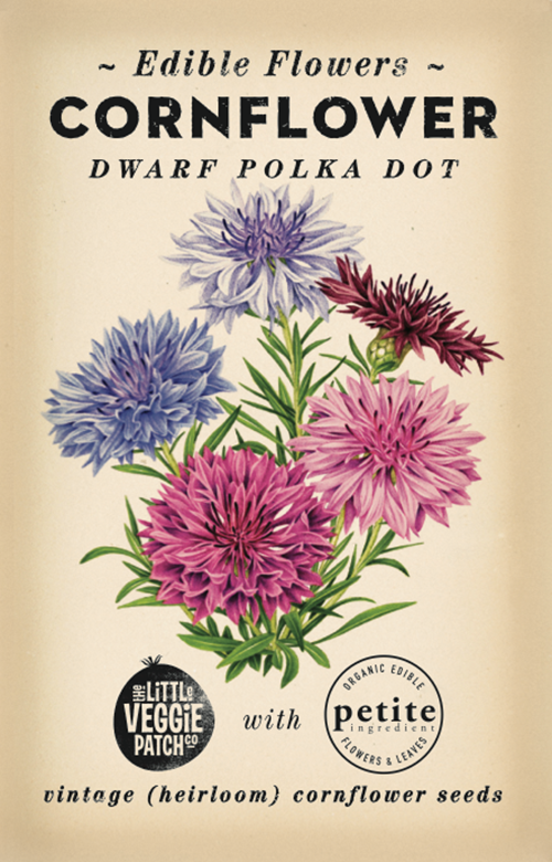 The Little Veggie Patch Co. Dwarf Polka Dot Cornflower Seeds