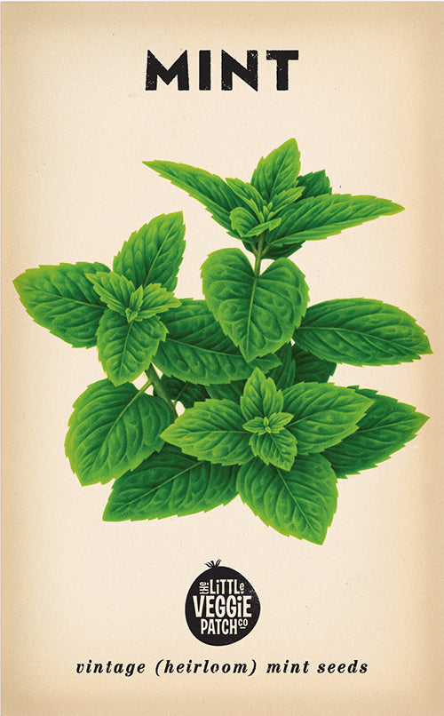 The Little Veggie Patch Co. Mint Seeds