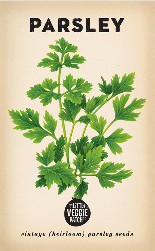 The Little Veggie Patch Co. Parsley Seeds